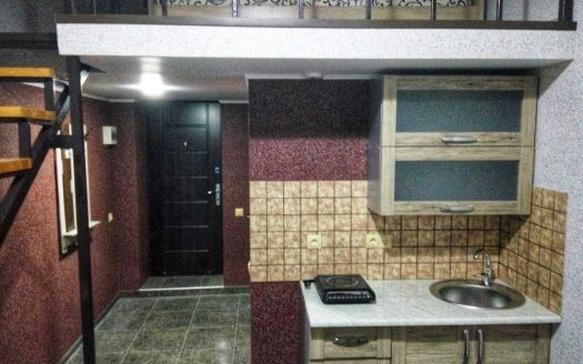 Уютная Двухуровневая квартира в районе метро Южный Вокзал id_189813